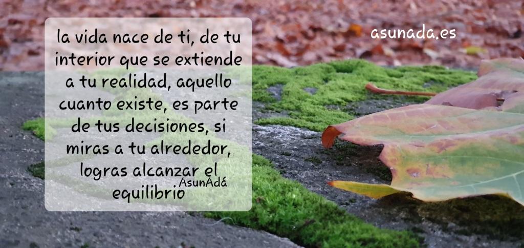Hoja caída sobre muro con musgo y desenfoque de fondo de hojas en suelo de parque en otoño por AsunAdá