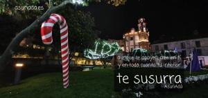 Jardín navideño al fondo está la Iglesia de La Peregrina. por AsunAdá