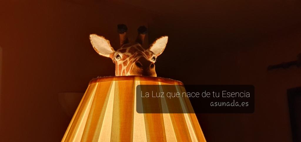 """Fondo oscuro, con luz de lámpara encendida tonos anaranjados, dentro de la tulipa una cabeza de jirafa con caja de texto """"La Luz que nace de tu Esencia"""" y la web asunada.es"""