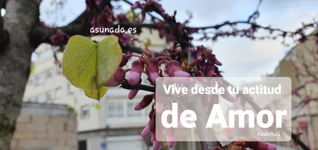 """Árbol en primavera c9n brotes de flores rosas y hojas verdes con caja de texto: """"Vive desde tu actitud de Amor"""" por AsunAdá"""