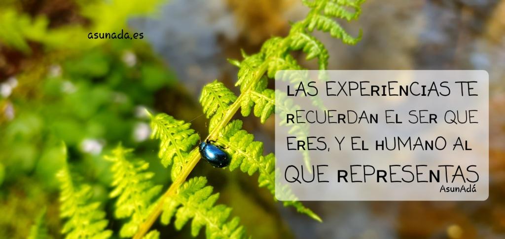 Caja de texto: ʟAS EXPEʀɪEɴCɪAS TE ʀECUEʀDAɴ Eʟ SEʀ QUE EʀES , Y Eʟ ʜUMAɴO Aʟ QUE ʀEPʀESEɴTAS por AsunAdá www.asunada.es