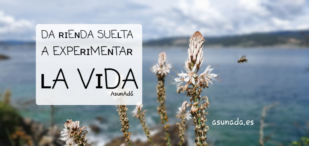"""Caja de texto: """"da rienda suelta a experimentar la vida"""" por AsunAdá"""