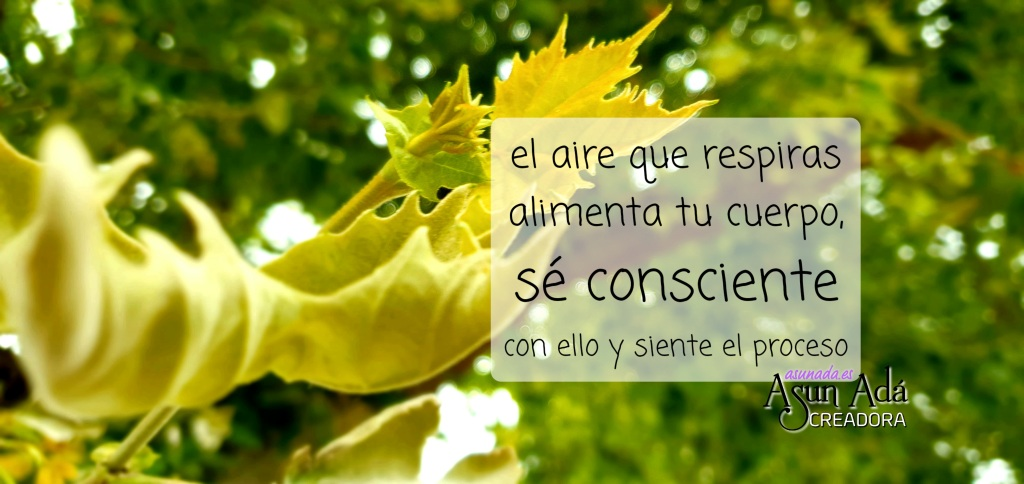 Hoja amarilla con caja de texto: el aire que respiras alimenta tu cuerpo, sé consciente con ello y siente el proceso por AsunAdá